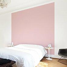 Apalis Vliestapete Uni Quadrat | Vlies Tapete Wandtapete Wandbild Foto 3D Fototapete für Schlafzimmer Wohnzimmer Küche | Größe: 192x192 cm, rosa, 98442