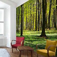 Fototapete Wald 3d Fototapete günstig online kaufen | LIONSHOME