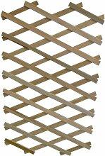 Apollo Rankgitter aus Holz, ausziehbar