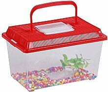 Aquarium mit Steine und Algen–27x 17x 15,5cm–ro