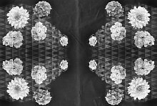 Architects Paper Fototapete Artwork Flowers,
