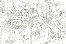 Architects Paper Fototapete Tiere Natur DragonFly