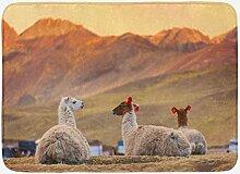 Argentinien Badematte, Verglasung Alpakas