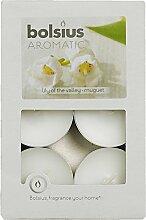 Aromatic 103626941503 Duft-Teelicht, Duft: Lilly