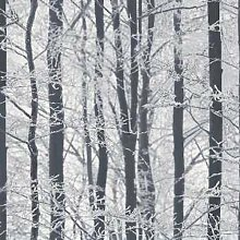 Arthouse 670200Frosted Holz Silber Tapete