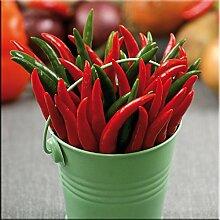 artissimo, Glasbild, 50x50cm, AG8562A, Hot & Spicy