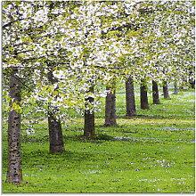 Artland Glasbild Blütenmeer 50x50 cm, grün