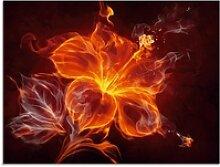 Artland Glasbild Feuerblume, Blumen (1 Stück) 80