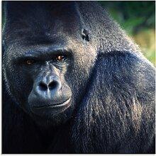 Artland Glasbild Gorilla 50x50 cm, schwarz