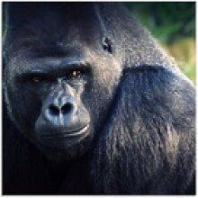 Artland Glasbild Gorilla, Wildtiere (1 Stück) 50
