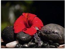 Artland Glasbild Hibiskus Stillleben, Blumen (1