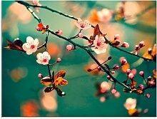 Artland Glasbild Japanische Kirsch Sakura Blumen