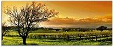 Artland Glasbild Landschaft mit Weinbergen, Felder