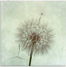 Artland Glasbild Pusteblume II, Blumen (1 Stück)