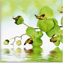 Artland Glasbild Schöne Orchidee mit grünem