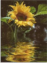 Artland Glasbild Sonnenblume mit Wasserspiegelung