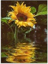 Artland Glasbild Sonnenblume mit Wasserspiegelung,