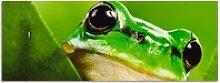 Artland Schlüsselbrett Ausspähender Frosch