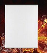 Artland Wand-Flur-Spiegel mit 25mm Facetten-Schliff Deko Modell-Rahmen digital bedruckt Motiv Misha Feuerblume Botanik Blumen Digitale Kunst Rot 100,4 x 80,4 x 1,6 cm B3DH