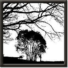 Artland Wandbild Landschaft 37x37 cm, schwarz