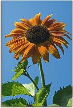 Artland Wandbild Sonnenblume 20x30 cm,
