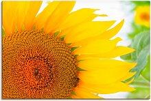 Artland Wandbild Sonnenblume 30x20 cm,