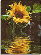 Artland Wandbild Sonnenblume 30x40 cm,