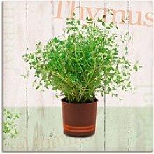 Artland Wandbild Thymian, Pflanzen (1 Stück) 50