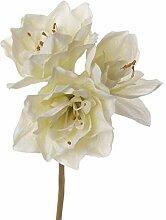artplants.de Künstliche Amaryllis DOLYN, Creme,