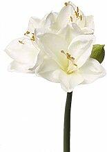 artplants.de Künstliche Amaryllis, weiß, 55cm -