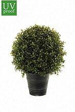 artplants.de Set 'Kunstpflanze Buchsbaum und
