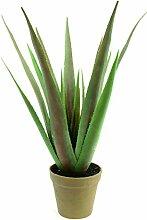 artplants - Deko Aloe Vera Pflanze im Übertopf,