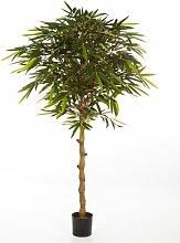 artplants - Großer Deko Bambus-Hochstamm Joan,