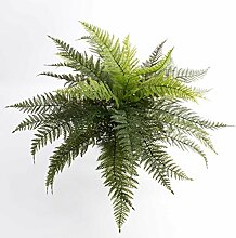 artplants Königsfarn Aaron, 35 Blätter, grün,