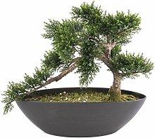 artplants Künstlicher Bonsai Zeder in Schale, 197