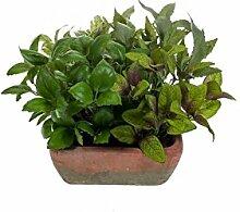 artplants Künstlicher Kräutermix LUCANO im Terracotta Topf, grün, 25 cm - Kunstpflanze/Kräuter Pflanze