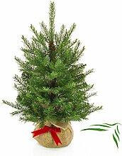 artplants - Künstlicher Tannenbaum Wellington im