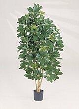 artplants - Kunstpflanze Schefflera Samantha,