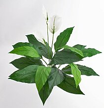 artplants Kunstpflanze Spathiphyllum Romy, weiß,