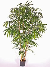 artplants Set 2 x Künstlicher Bambus Naruto,