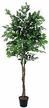 artplants Set 2 x Kunstpflanze Ficus-Benjamini mit