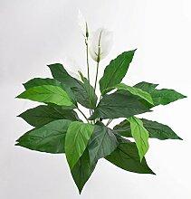 artplants Set 2 x Kunstpflanzen Spathiphyllum