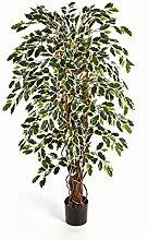 artplants Set 'Kunstpflanze Ficus Benjamini +
