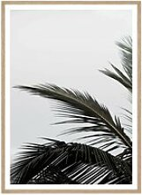 artvoll - Palm Leaf Poster mit Rahmen, Eiche
