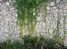 AS Creation Designwalls Stone Wall, Natur