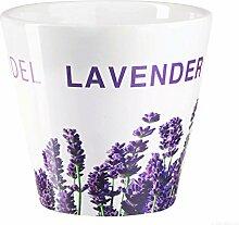 ASA Übertopf Lavendel