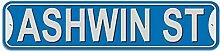 Ashwin Schild–Kunststoff Wand Tür Street Road Stecker Name, plastik, blau, Stree
