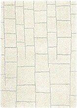 Asiatic Teppich Wohnzimmer Carpet hochflor Design