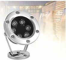 ASPZQ IP68 LED Fountain Light 24V