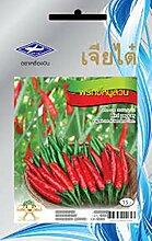 Astonish Samen-Paket: 1 Packung: Samen Chili Spicy